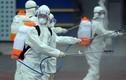 Cập nhật ngày 3/1: Hàn Quốc thêm 376 ca nhiễm Covid-19, tổng số lên 3.526