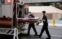 Thư New York: Những người chết vì Covid-19 đều ra đi đơn độc