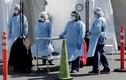 Vượt Italy, Mỹ có số người chết vì COVID-19 cao nhất thế giới