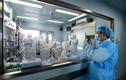 Trung Quốc phát hiện một cặp vợ chồng cùng nhiễm virus H7N9