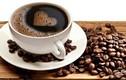 Uống 5 ly cà phê mỗi ngày giúp ngăn ngừa ung thư gan