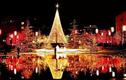 Top cung hoàng đạo đón vận đào hoa rực rỡ trước Giáng Sinh