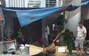 Đồng Nai: Đang đi xe máy bị trụ điện đổ đè chết