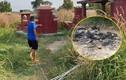 Vụ xương người bị đốt ở nghĩa địa tại Sài Gòn do hung thủ phi tang xác?