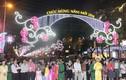 TPHCM tưng bừng khai mạc đường hoa Nguyễn Huệ