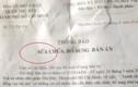 Nóng: Tòa án ND quận Thủ Đức vi phạm tố tụng nghiêm trọng?