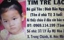 Lộ manh mối vụ bé gái 3 tuổi mất tích bí ẩn