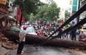 Hai người chết thảm ở Sài Gòn vì tai họa trên trời rơi xuống