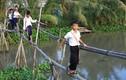 """2 cha con suýt mất mạng vì ngã """"cầu khỉ"""" ở Sài Gòn"""