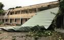 Mưa dông kinh hoàng ở Sài Gòn: Cây đổ, đường ngập, bay mái nhà