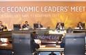 Phát biểu của Chủ tịch nước tại phiên họp các nhà lãnh đạo APEC 2017