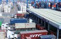 Chuyện khó tin ở cảng lớn nhất miền Nam: 534 container vô thừa nhận