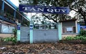 Trường tiểu học bỏ hoang nhiều năm ở TP.HCM: Chủ tịch quận nói gì?