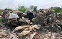 TP HCM: Công ty Bắc Nam chôn lấp hàng nghìn tấn chất thải vi phạm pháp luật?