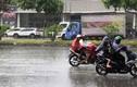 """Người Sài Gòn háo hức đón """"mưa vàng"""" giữa nắng nóng"""