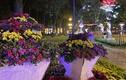Cảnh lộng lẫy đèn hoa đón chào 2020 ở trung tâm Sài Gòn