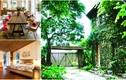 Những ngôi nhà vườn đẹp ngất ngây ở ngoại thành Hà Nội