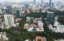 """Lô đất 8.300 m2 bên hồ Con Rùa ở Sài Gòn có vị trí """"vàng"""" thế nào?"""