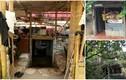 10 ngôi nhà Việt quái dị nhất năm 2017
