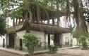 """Đâu là ngôi chùa dành cho """"quý tộc"""" ở Việt Nam?"""