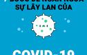 Video vui hướng dẫn 7 bước phòng tránh Covid-19