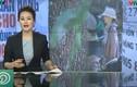 Ứng dụng cho vay nặng lãi của Trung Quốc âm thầm rút khỏi Việt Nam?