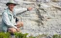 Kinh dị giống quái thú hơn 100 nghìn năm vẫn sống khỏe