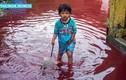 """Sự thật về """"dòng sông máu"""" làm ngập ngôi làng ở Indonesia"""