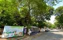 Hà Nội: Kỳ lạ gian hàng đổi giấy vụn, vỏ lon... lấy thực phẩm sạch
