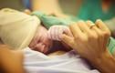 Trẻ sinh mổ có hệ miễn dịch yếu hơn trẻ sinh thường
