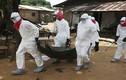 Cảnh báo Ebola đột biến và lây nhiễm kinh khủng hơn