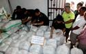 Cận cảnh 5,5 tấn ma túy vừa bị triệt phá ở Hà Tĩnh