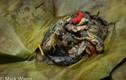Hãi hùng với món nòng nọc ếch kinh dị của Thái Lan