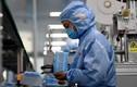 Chế được vắc xin chống virus corona mới, thêm người nhiễm bệnh dù không đến Vũ Hán