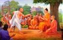 """Lời dạy sâu sắc của Phật: """"Càng tranh đua sai đúng, bản thân càng phiền não"""""""