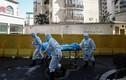 Số ca tử vong vì virus corona ở TQ vượt 1.800, tăng 98 ca tử vong ngày 17/02
