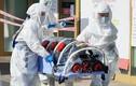 Số người nhiễm COVID-19 ở Hàn Quốc, Ý cùng tăng chóng mặt