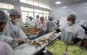 """""""Đột nhập"""" nhà bếp nấu 20.000 suất ăn cho bệnh nhân nhiễm COVID-19  Vũ Hán"""