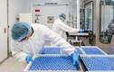 WHO có 7- 8 ứng viên hàng đầu sản xuất vắc xin ngừa COVID-19