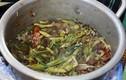 Món canh chua kiến vàng Ê Đê vừa lạ vừa giải nhiệt mùa hè
