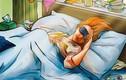 Ngủ nhiều hơn 10 tiếng/ngày, bạn có thể gặp những vấn đề sức khỏe này