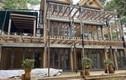 Phan Như Thảo xây biệt thự gỗ 800 m2 mang tên con gái rượu