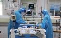 COVID-19 chủng mới nguy hiểm hơn hay các ca tử vong do bệnh nền nặng?