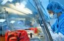 Nga nhận được đề nghị từ Hoa Kỳ sản xuất vắc-xin phòng COVID-19
