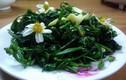 """Không ngờ hoa xuyến chi mọc ven đường """"chế"""" nhiều món ngon đến vậy"""