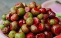 """Vào đầu hè, những quả chua đặc sản này khiến chị em """"rớt nước miếng"""""""