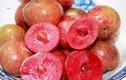 """Loạt quả chua đặc sản rộ mùa vào tháng 4 khiến ai cũng """"ứa nước miếng"""""""