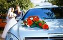 Đang vui vẻ trên xe dâu, cô dâu chú rể gặp chuyện sợ không ngờ...