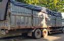Chạy trốn công an vì đổ trộm 20 tấn rác thải, tài xế bị rắn cắn phải cấp cứu
