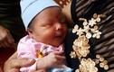 Bé gái 3 ngày tuổi bị bỏ rơi, mẹ để lại tâm thư xin nhà chùa nuôi giúp